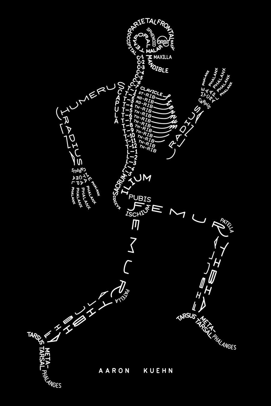 SkeletonTypogram-AaronKuehn