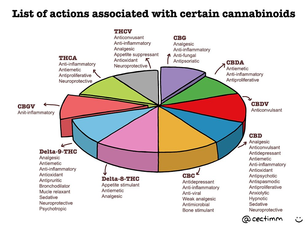 list-of-actions-associated-with-certain-cannabinoids-b